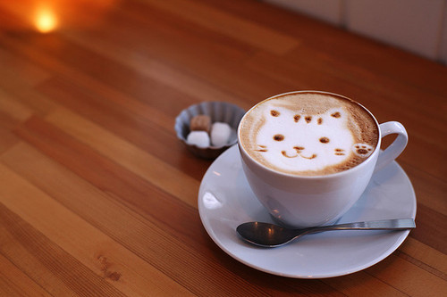 coffe-cute-kawaii-kitty-photography-Favim.com-114952